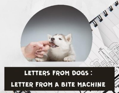 letters-from-dogs