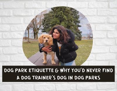 dog-park-etiquette