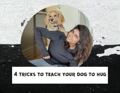 how-to-teach-a-dog-to-hug 1