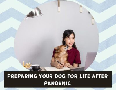 life-after-pandemic